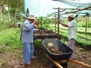 Boeren Capira